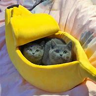Banana Pet Bed