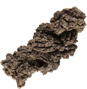 Coprolite - Dino Poop