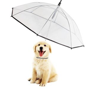 Dog Umbrella/Leash