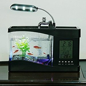 Fishtank Desktop Organizer