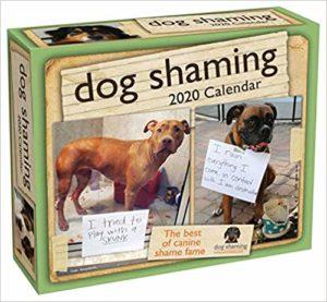 Dog Shaming Calendar