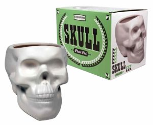 Skull Plant pot
